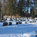 Padasjoen hautausmaa